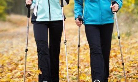 Занятия скандинавской ходьбой возобновляются с 1 сентября